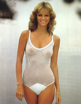 cheryl tiegs bathing suit